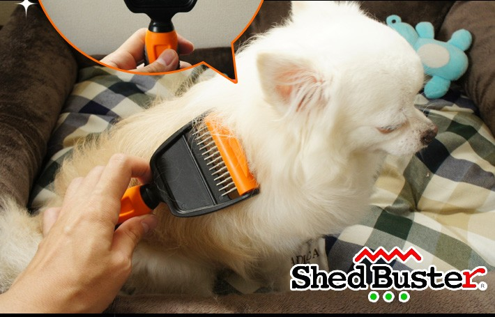 shedbuster