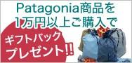 Patagonia パタゴニア ギフトバッグプレゼント