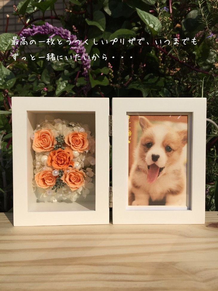 フォトフレーム(オレンジ)/写真立て/結婚祝い/結婚記念日/誕生日プレゼント/贈り物送料無料 lpm0024 商品イメージ1