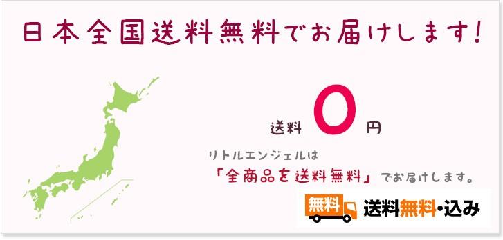 プリザーブドフラワー プチギフトはピンクのかわいいカーネーション母の日/誕生日/愛妻の日/ホワイトデー送料無料 商品イメージ14