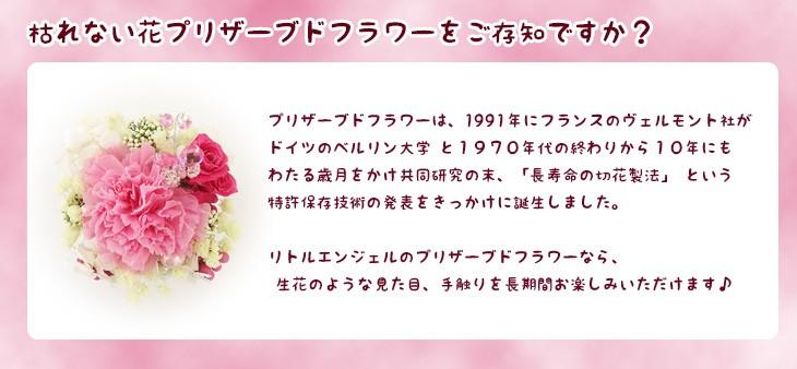 プリザーブドフラワー プチギフトはピンクのかわいいカーネーション母の日/誕生日/愛妻の日/ホワイトデー送料無料 商品イメージ13